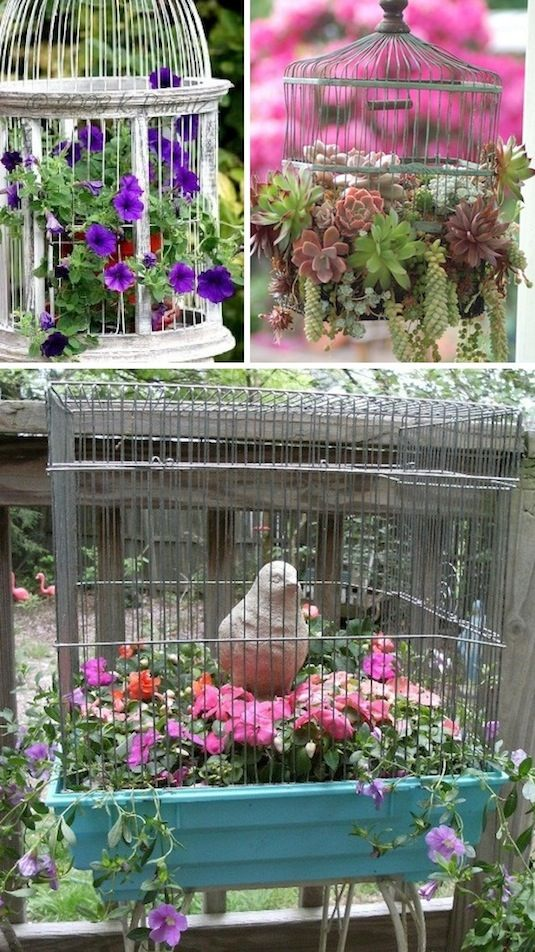 24 Creative Garden Container Ideas | Use bird cages as planters!