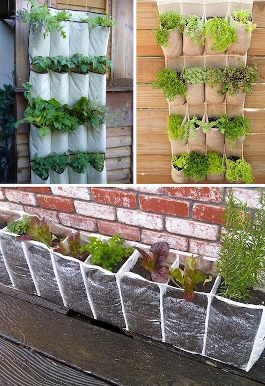 hanging shoe racks to grow a vertical garden