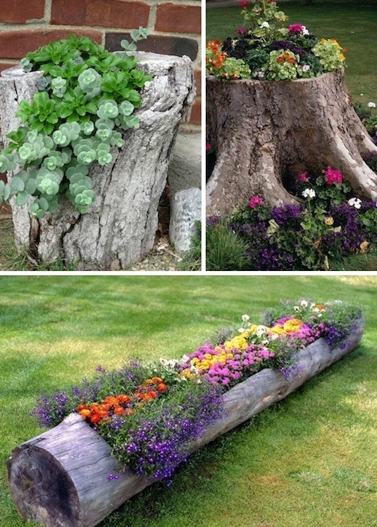 tree stumps and logs as planters