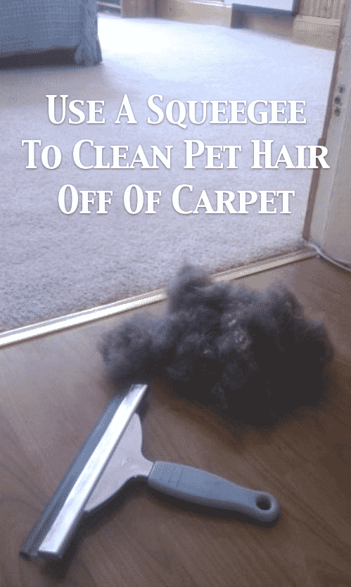 Cleaning tips for pets -- DIY household cleaning tips, tricks and hacks for your home bathrooms, kitchens, bedrooms, floors, furniture and more! Perfect for a lazy girl like me. Listotic.com