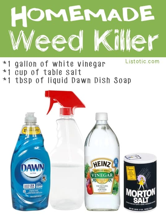 Easy DIY homemade week killer using vinegar, salt and dish soap -- Easy DIY gardening tips and ideas for beginners and beyond! Tips and tricks for your flower or vegetable garden, or for your front or backyard landscaping design. A few garden projects and ideas you can do for cheap! Listotic.com