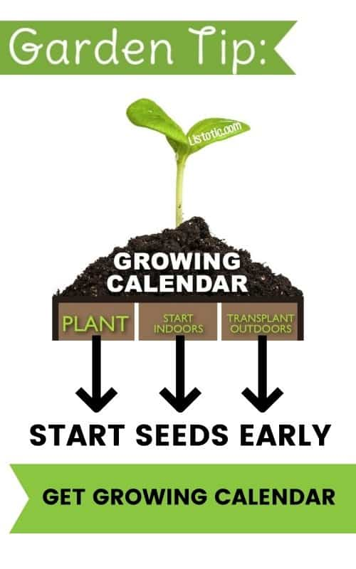 growing calendar for vegetable gardens and seeds