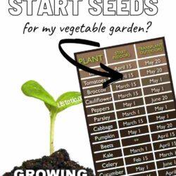 garden seed planting calander