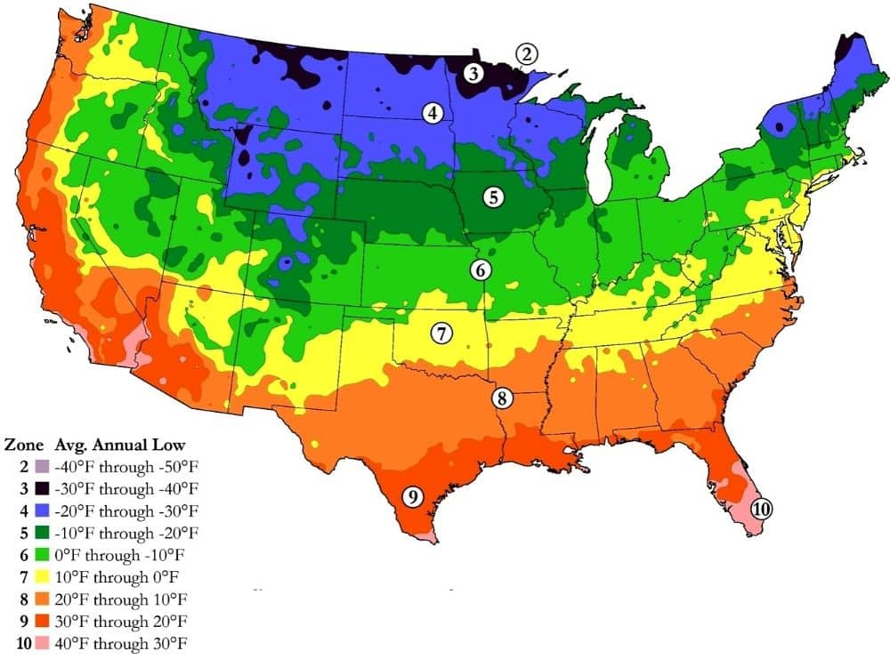 planting zone map calendar when to plant vegetable garden