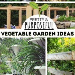 vegetable garden designs