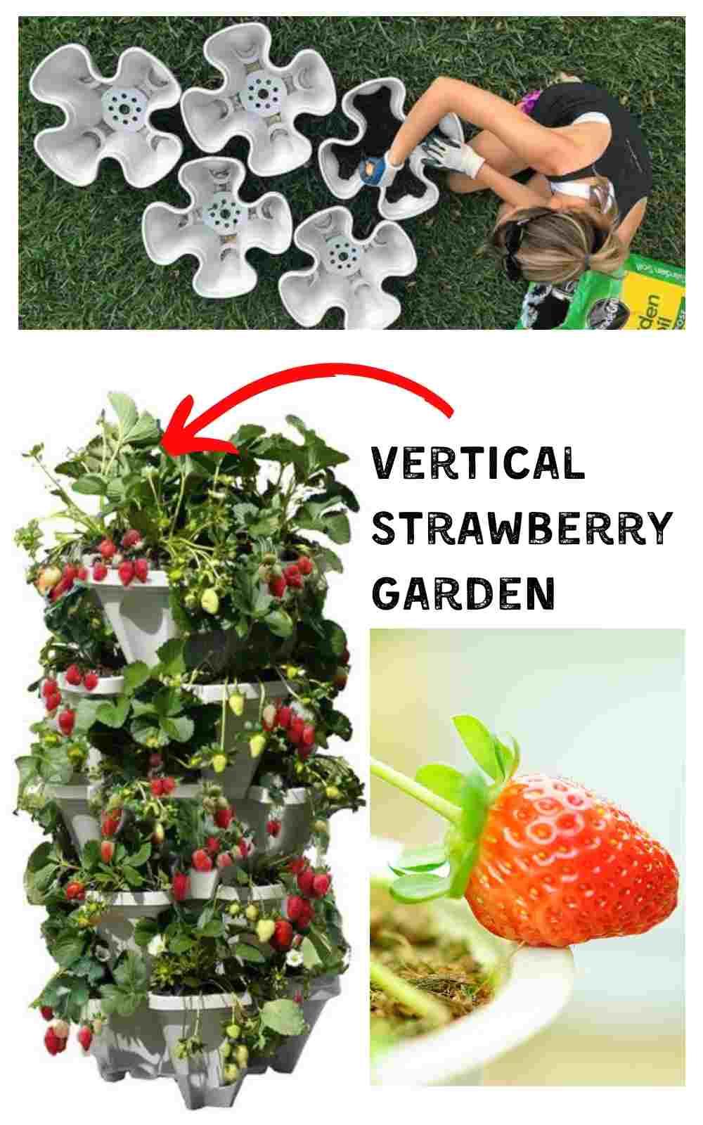 creative garden container idea vertical strawberry planter