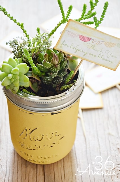 Painted mason jars are perfect for giving flowers or succulents to a teacher for Valentine's Day.