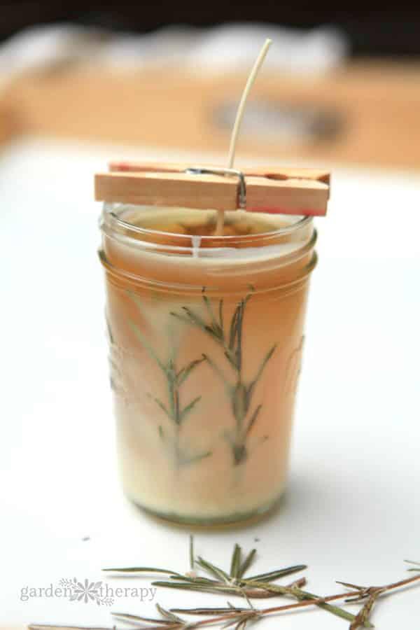 Mason Jar Rosemary pressed herb candle DIY.