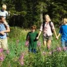 Family of five out hiking in tall grass and trees. Enjoying the outdoors.