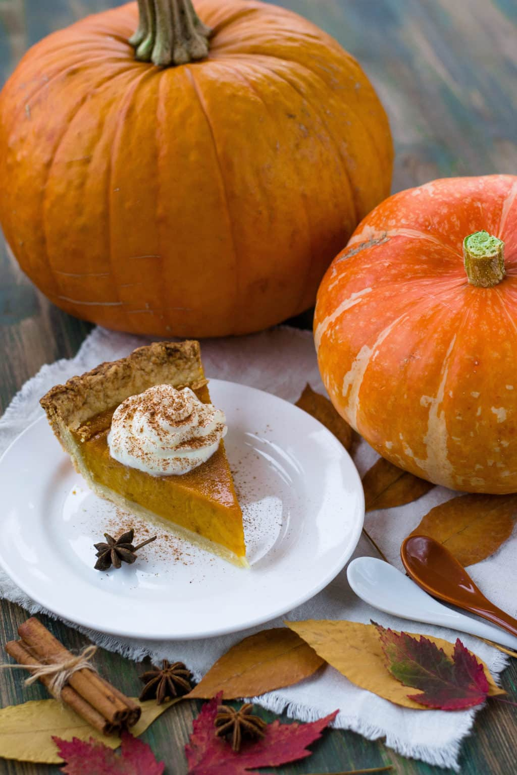 Piece of pumpkin pie and two pumpkins sitting next to it. Ready for Thanksgiving.