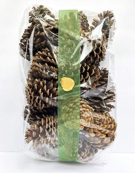 craft pinecones in a bag
