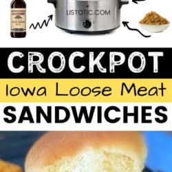 sandwich made with ketchup mustard broth beef and brown sugar in the crockpot