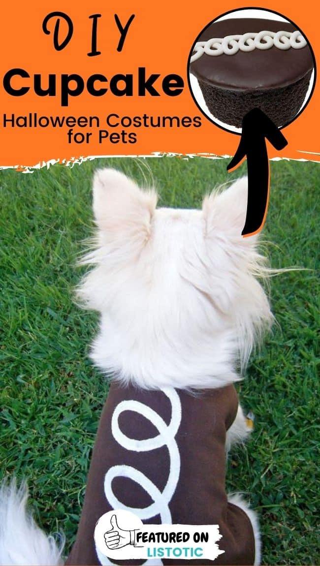 Ein kleiner, flauschiger Hund, der ein DIY Cupcake Tier Halloween Kostüme trägt.
