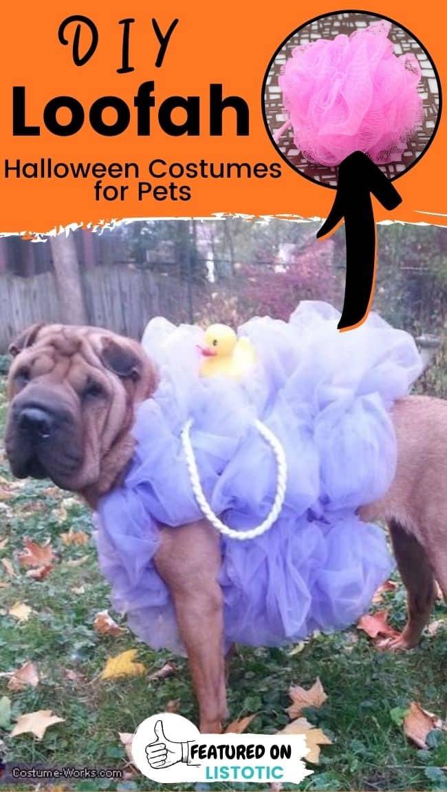 Ein Shar Pei Hund, der ein DIY Luffa Last Minute Hundekostüm trägt.