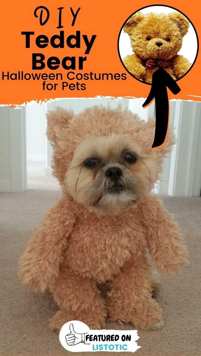 Ein kleiner Hund, der ein DIY Teddybär Lastminute Hundekostüme trägt.