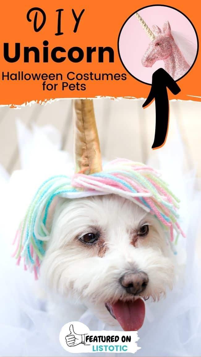 Ein flauschiger Hund, der ein DIY Einhorn Haustierkostüme trägt.