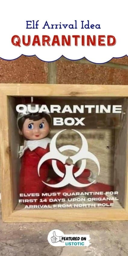 Elf im Regal in einer Quarantänebox