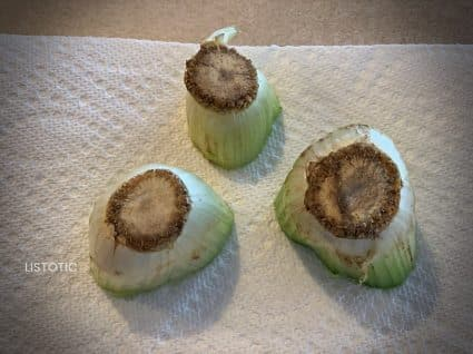 celery stems to make celery stamp art a craft idea for kids