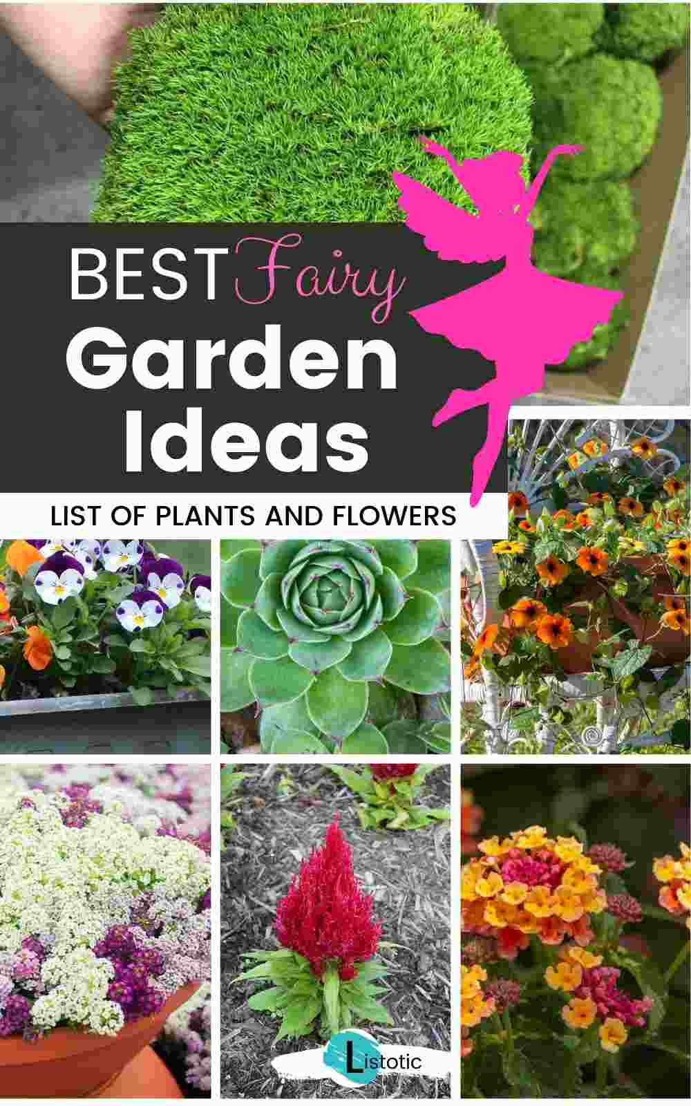 Best Fairy Garden Ideas and hardy annual flowers