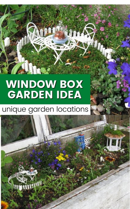 small miniture garden inside a window box